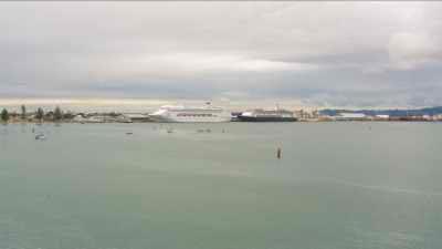 Nettoyage des eaux du port