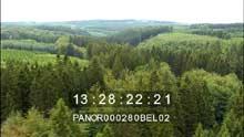 La forêt des Hautes-Fagnes