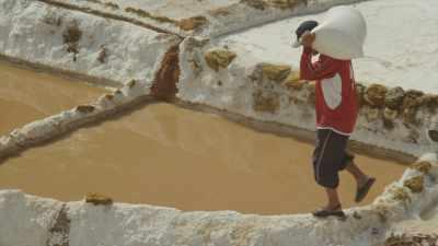 Exploitation traditionnelle des Salins