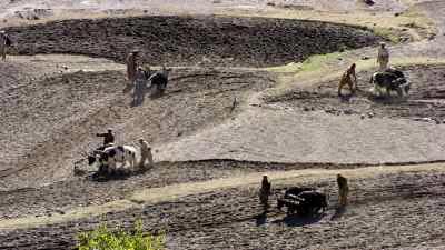Cultivateurs cultuvant au soc et à la charrue