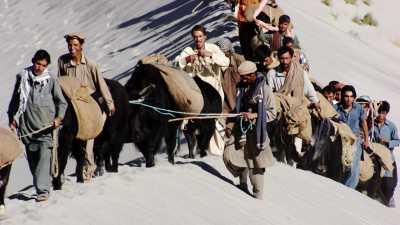 Caravane de Yak au dessus de l'Indus
