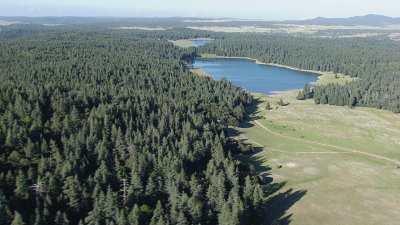 Parc National d'ifrane, forêts et lacs