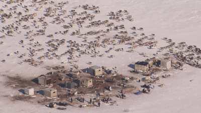 Camp de nomades Nénètses