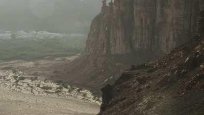Découverte de la vallée et de la ville d'Al-Ula