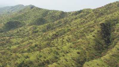 Les collines vertes du Jebel Logotafian, près de la frontière kenyane
