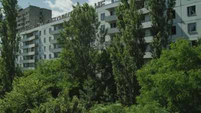 La nature reprend ses droits dans la cité désertée