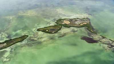 Des îles verdoyantes s'étirent