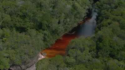 Rivière dans le parc national Canaima