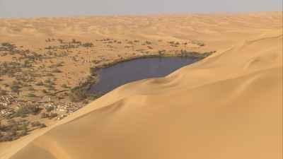 Dunes et oasis sahariennes